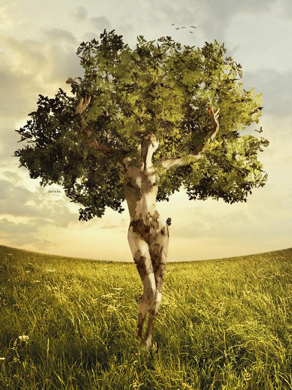 Ciclo Classi di Esercizi di Bioenergetica – Dialogo tra mente e corpo